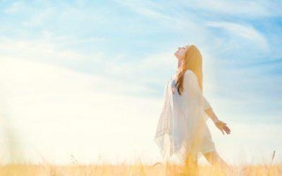 Meditación y Movimiento