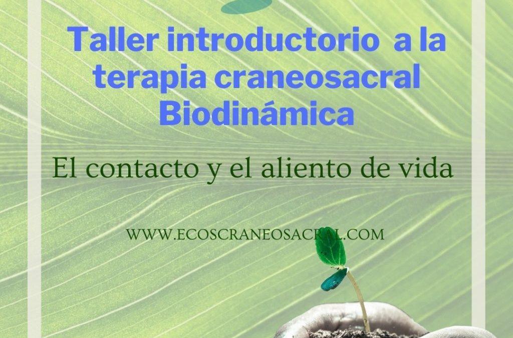 Taller Introductorio Terapia Craneosacral Biodinámica