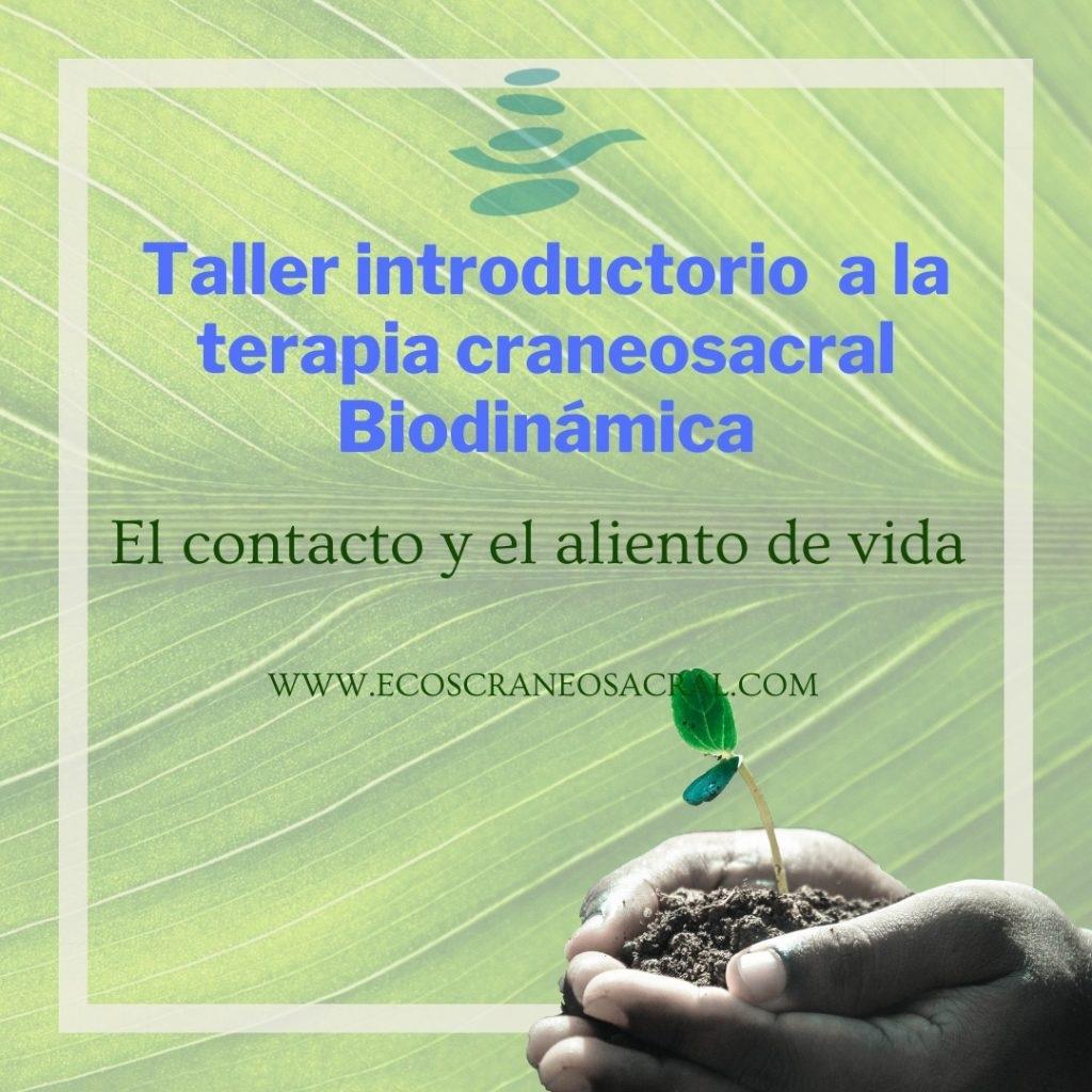 Taller_TCSB_septiembre